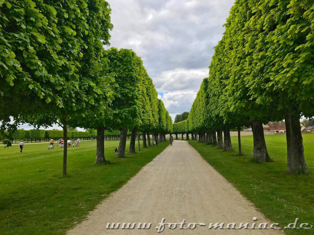 Allee vor dem Eingang vom majestätischen Chateau Chambord