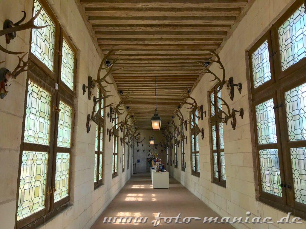 Trophäen hängen beiseite im Jagdsaal von Chateau Chambord
