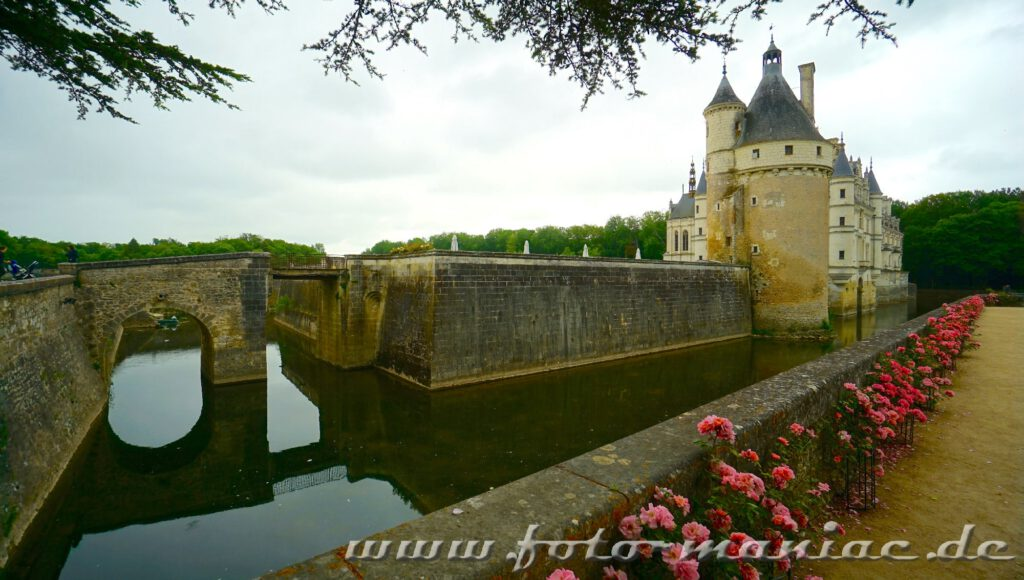 Rote Rosen schmücken eine Mauer von Chateau Chenonceau
