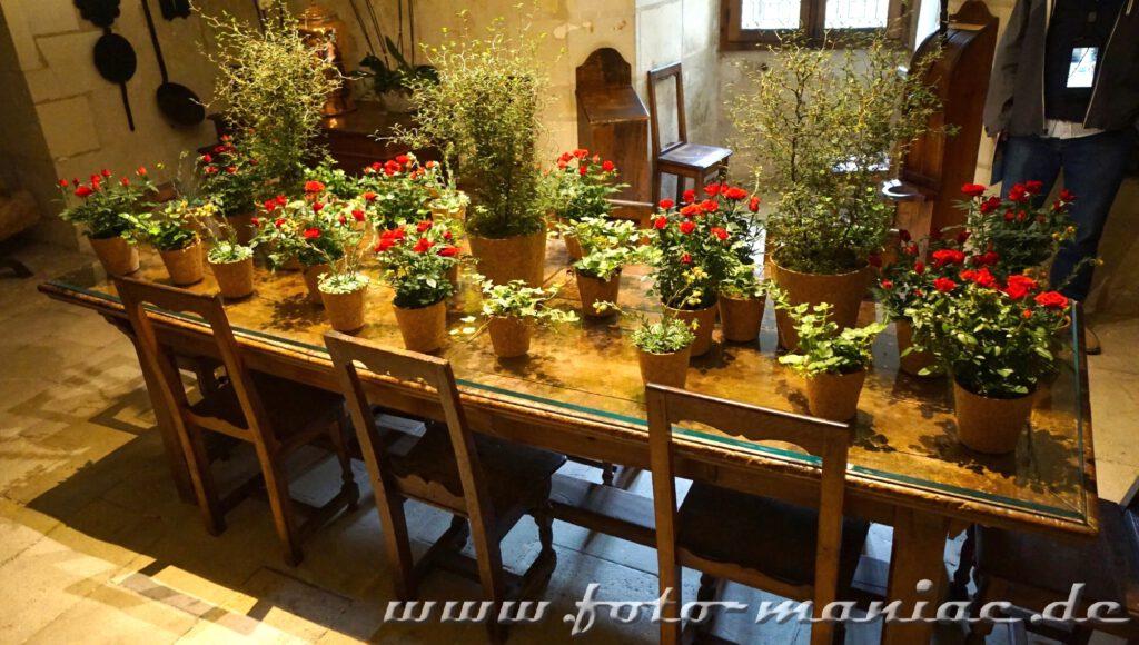 Blumentöpfe auf einem langen Küchentisch