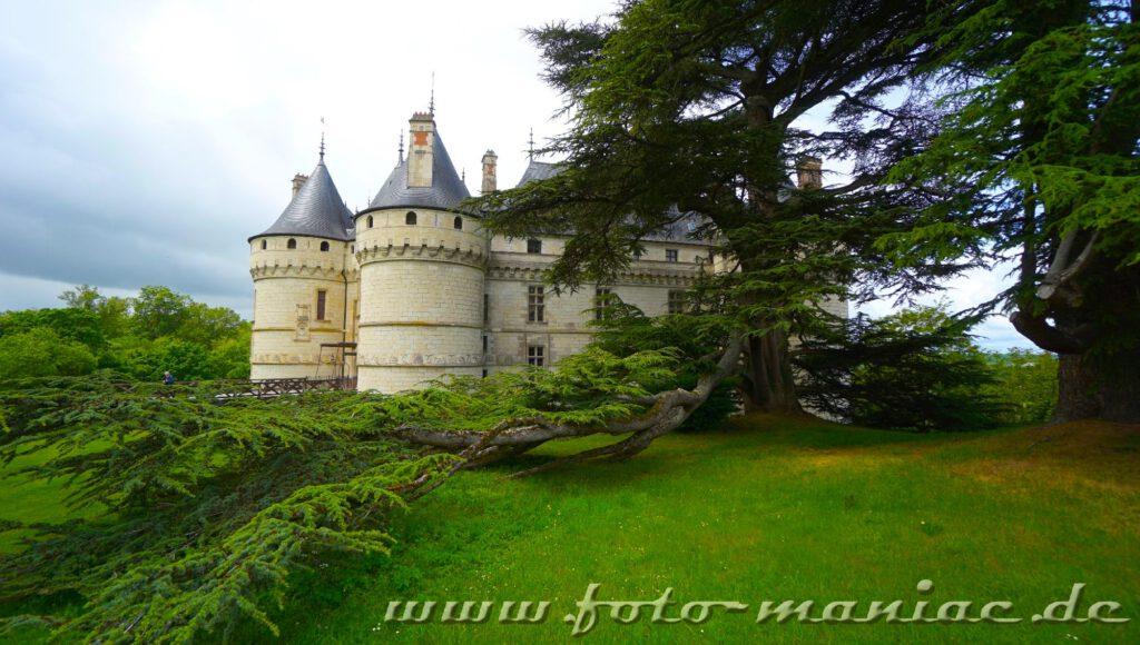 Bäume mit ausladenden Ästen vor dem burgähnlichen Chateau Chaumont