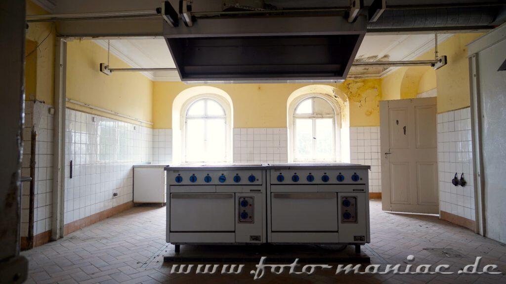 Herde stehen nebeneinander in der Küche von Schloss Vitzenburg