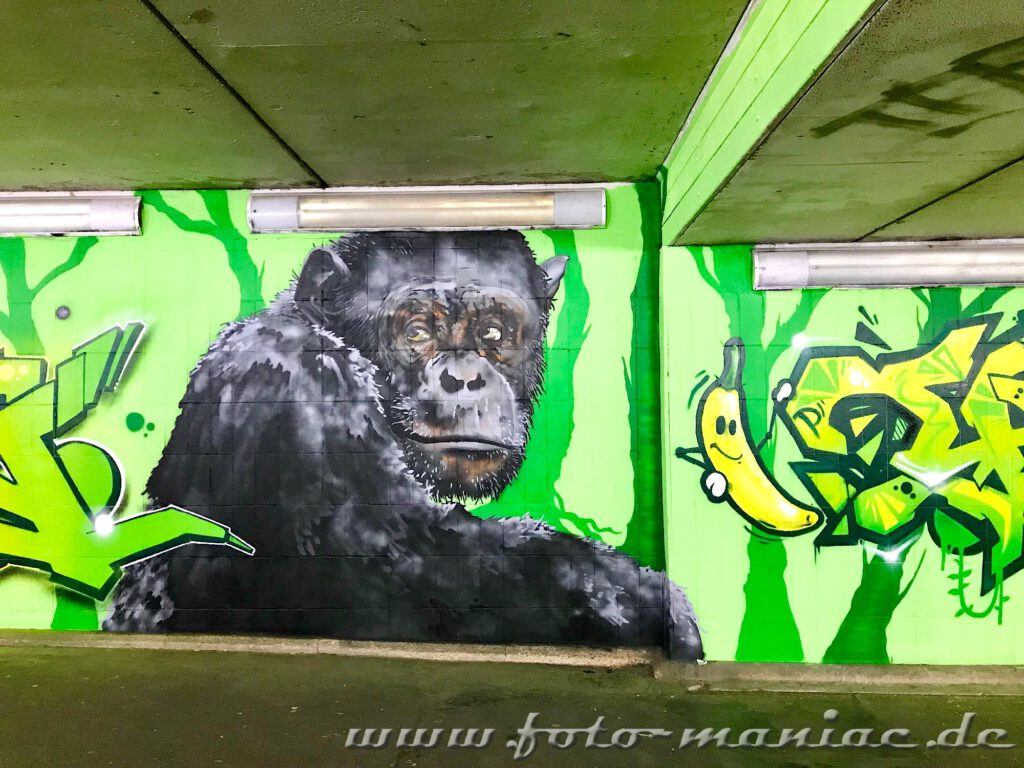 Affe und Banane auf grüner Wand