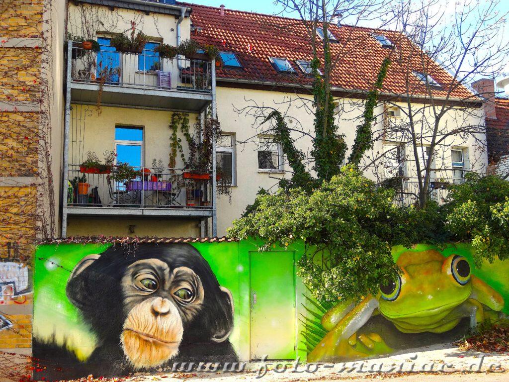 Schöne Graffiti in Halle - Affe und Frosch auf einer Mauer