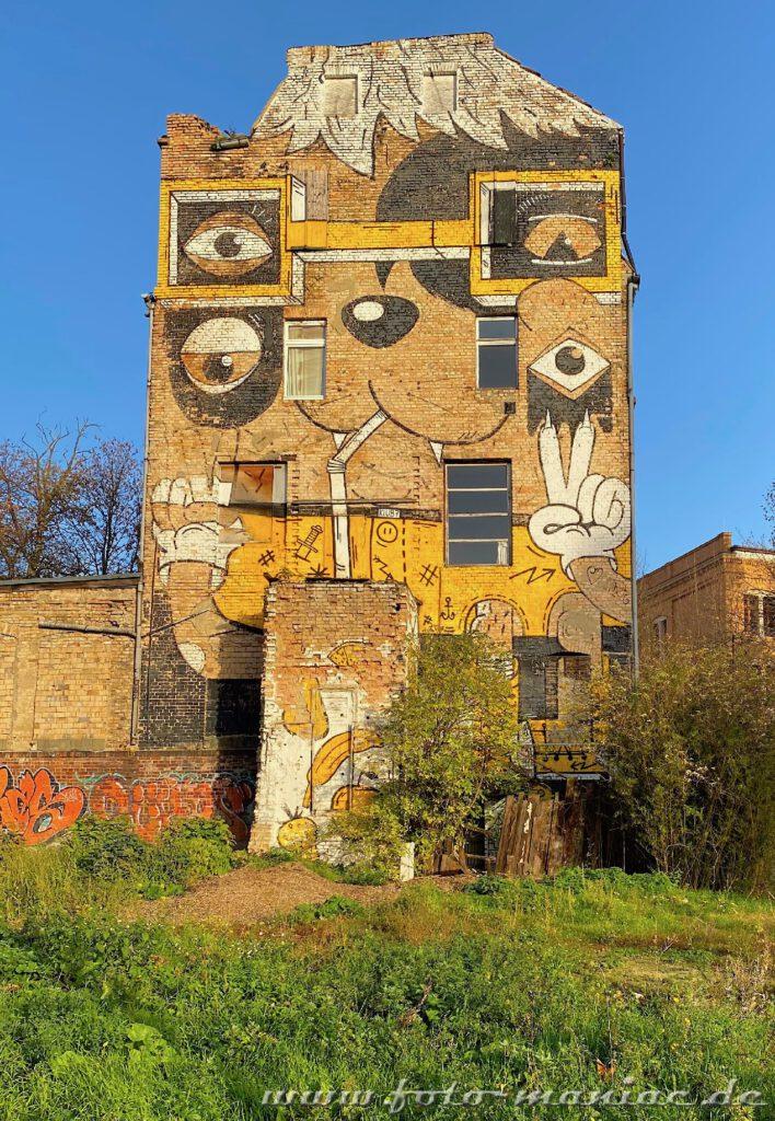 Schöne Graffiti in Halle - Tier-Gesicht wurde auf maroder Fassade
