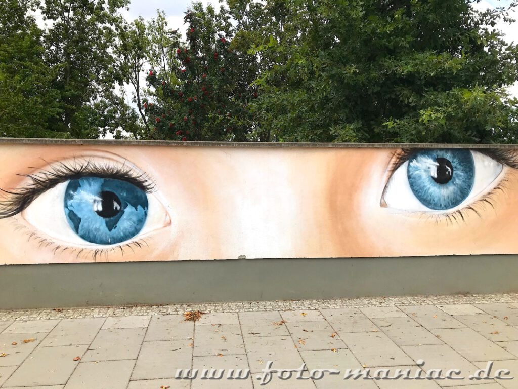 Zwei blaue Auge schauen von der der Mauer