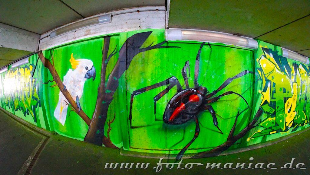 Schöne Graffiti in Halle - Käfer und Kakadu auf einer grünen Wand
