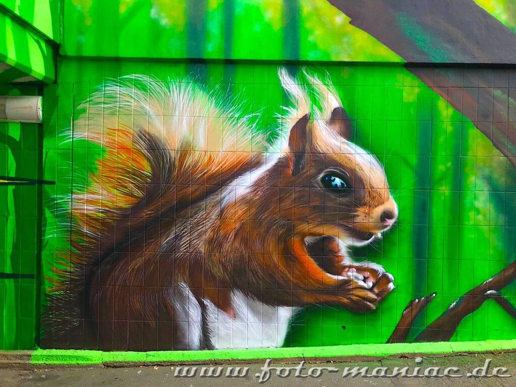 Eichhörnchen-Graffito auf grüner Wand