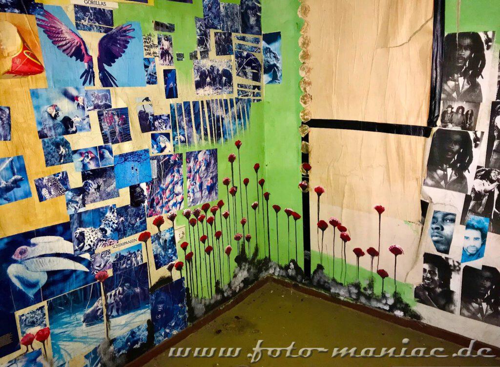 Marode Platte - Porträtfotos und Blumen an den Wänden