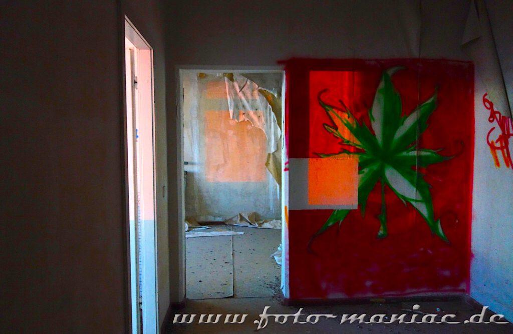 Bild von Hanfpflanze auf rotem Grund an der Wand