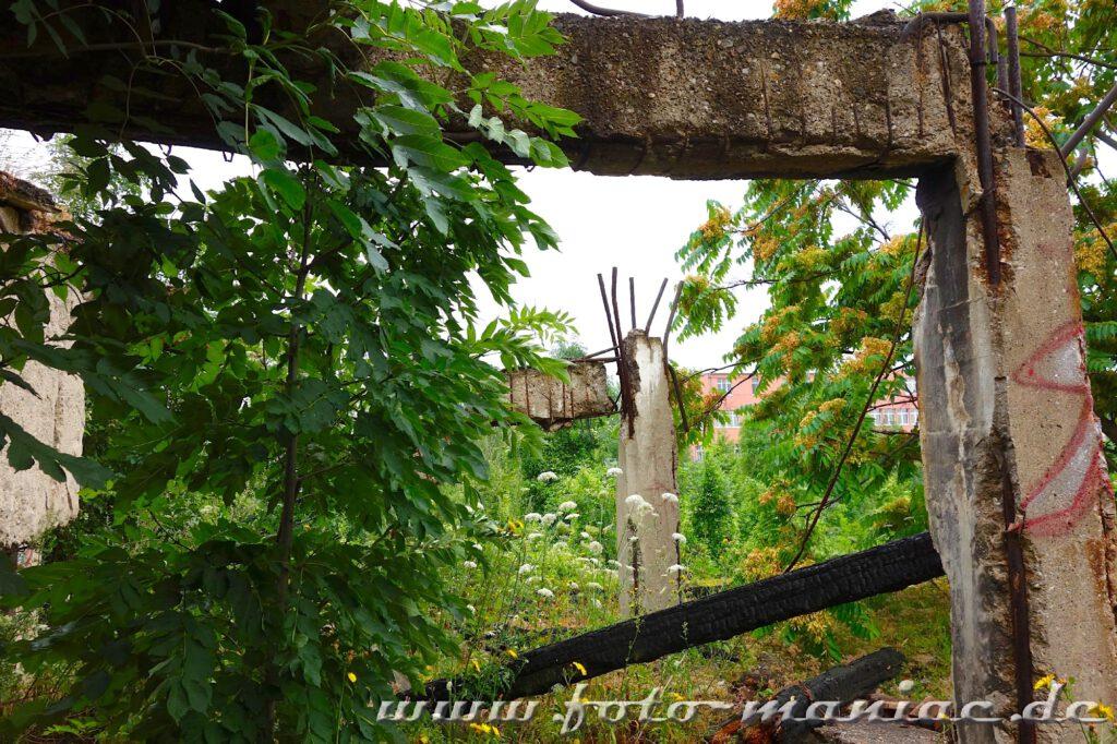 Marode Pfeiler und Bewehrungen in der verlassenen Spirtfabrik in Halle