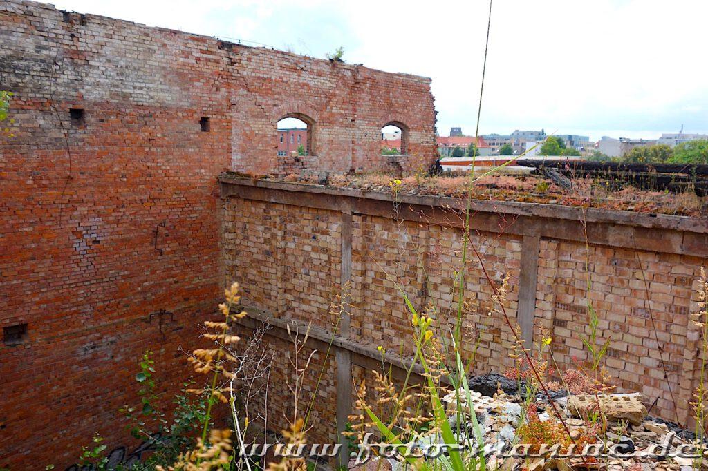Die Grundmauern eines Gebäudes der Spritfabrik Halle stehen noch