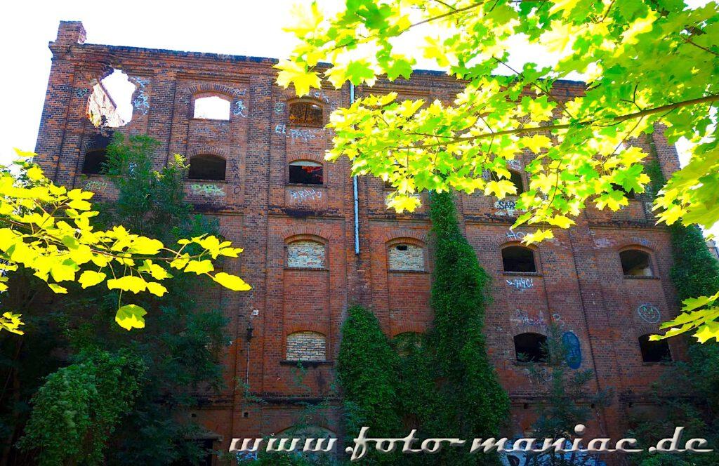 Blick auf die Fassade der verlassenen Spritfabrik in Halle