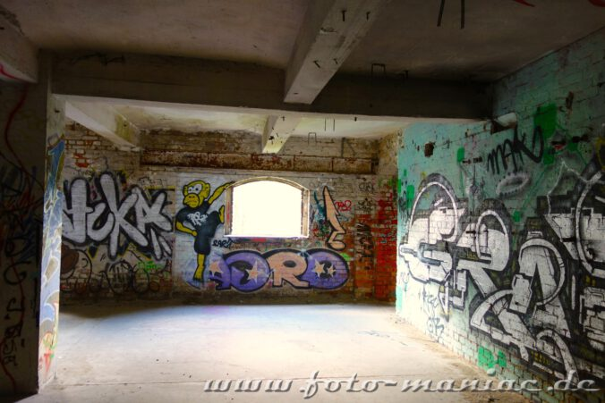 Ein Graffito-Affe an der Fensterwand in der Spritfabrik Halle