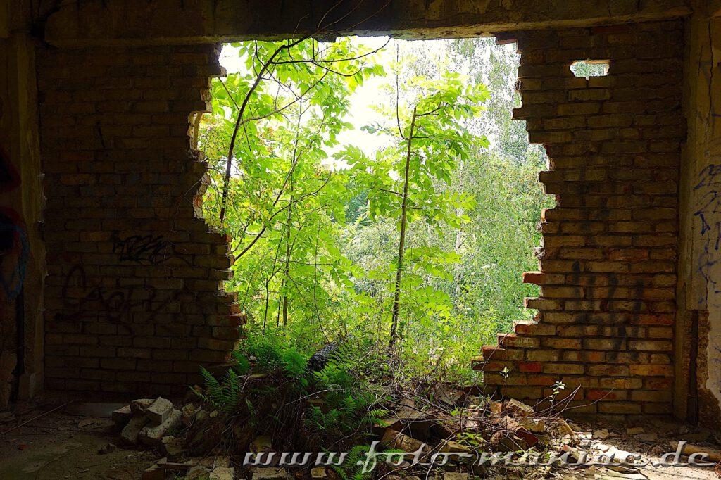 Großer Mauerdurchbruch mit Blick ins Grüne