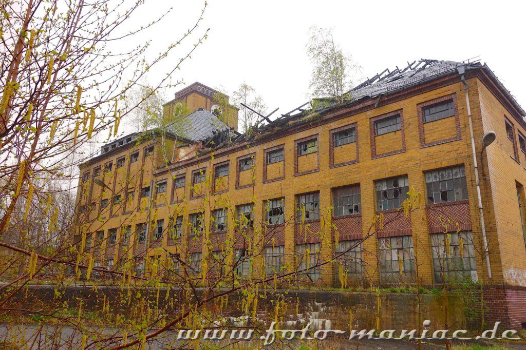 Gebäude der verlassenen Brauerei Sternburg