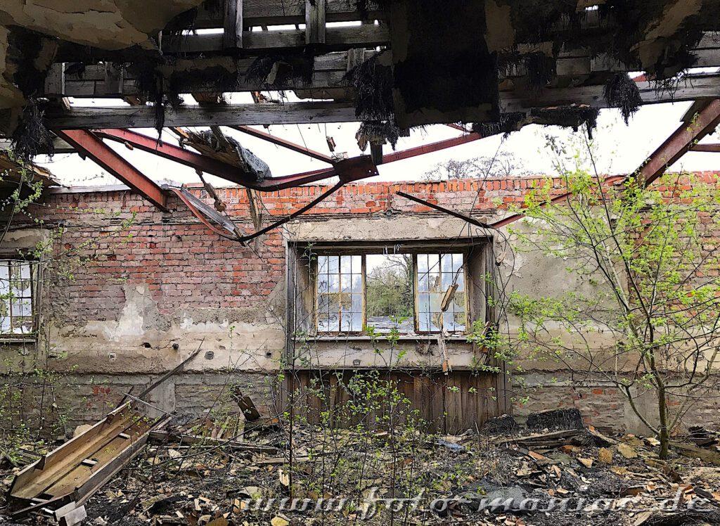 Die Reste einer Dachkonstruktion