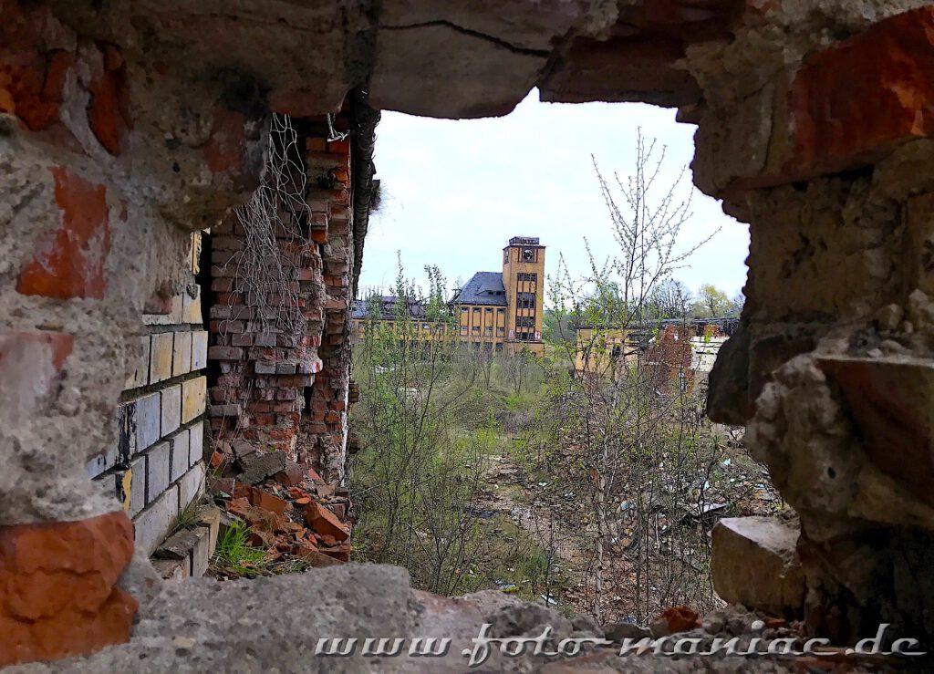 Blick durch Mauerreste in der verlassenen Brauerei Sternburg