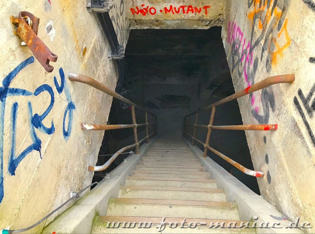 Eine steile Treppe führt im Turm aufs Dach