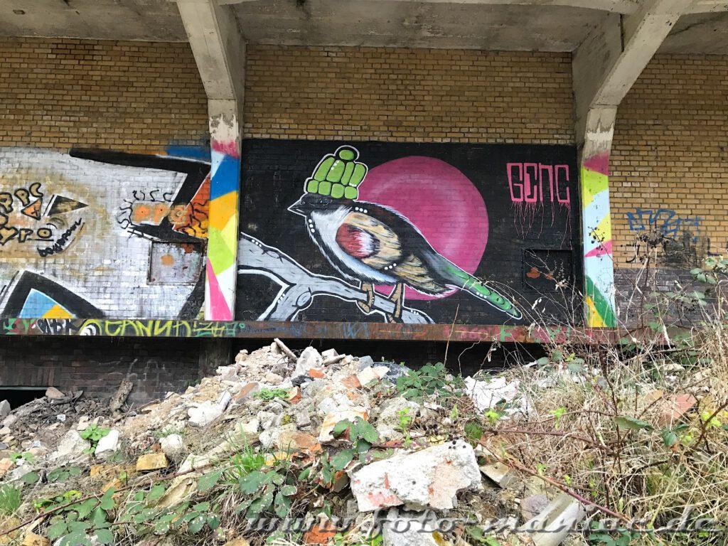 Graffiti-Vogel mit Pudelmütze in der verlassenen Brauerei Sternburg