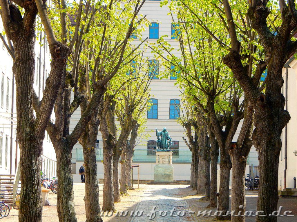 Lindenblüten-Spalier führt zum Francke-Denkmal, das zu den fotogenen Ecken in Halle zählt
