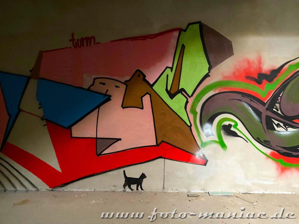 Gemalte schwarze Katze unter buntem Graffito an der Turnhalle
