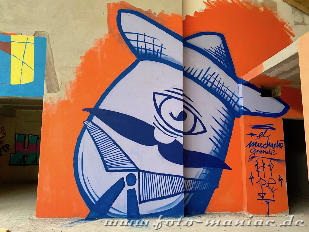 Mann mit Schnurrbart als Graffiti
