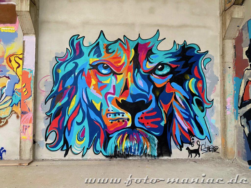 Graffiti im Sportkomplex -Löwengesicht und eine schwarze Katze
