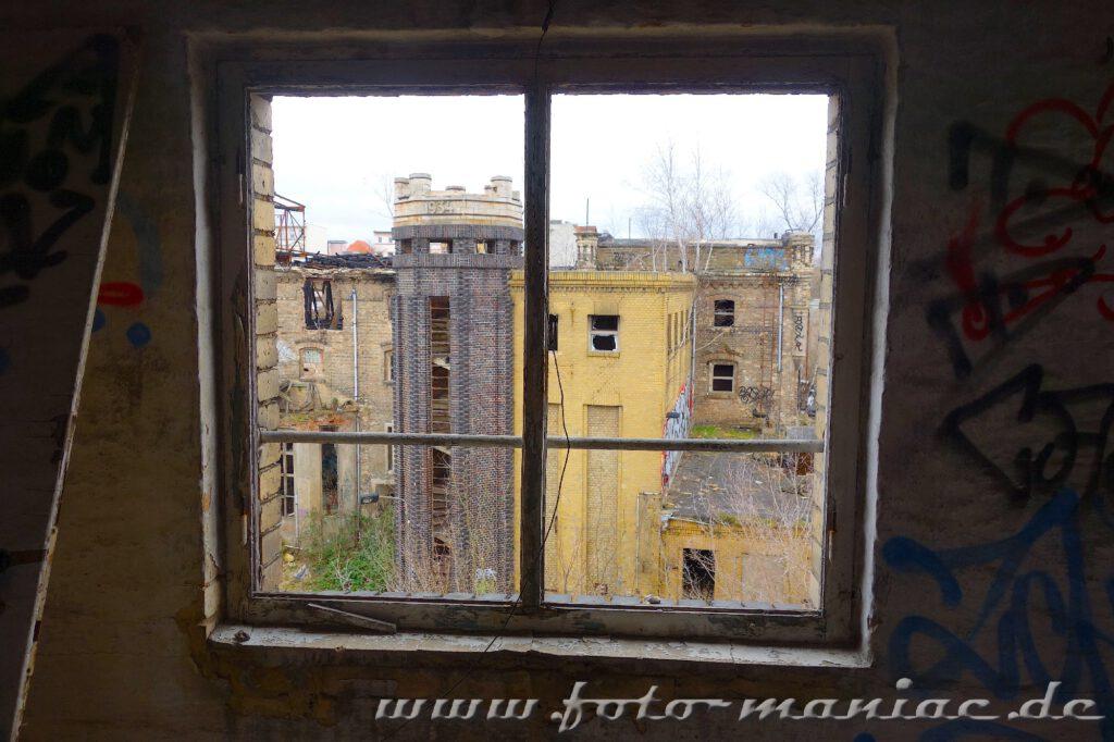 Blick aus dem Fenster auf die marode Freyberg-Brauerei in Halle