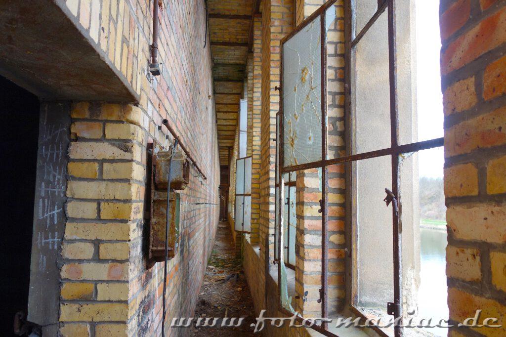 Fenster einer vorgelagerten Fassade der maroden Freyberg-Brauerei in Halle