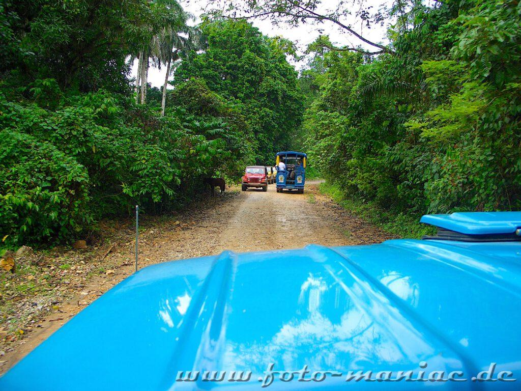 Ausflug im Paradies in der Karibik