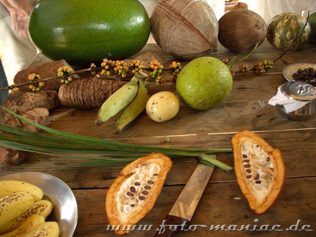 Karibische Früchte