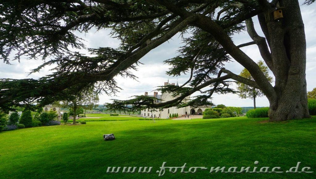 Gepflegter Rasen im Schlosspark