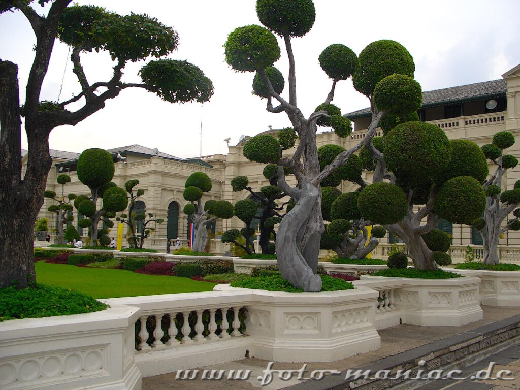 Akkurat geschnittene Bäume in der Palastanlage