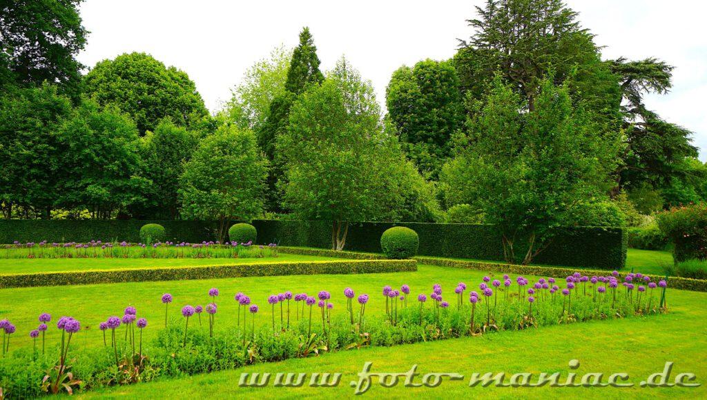 Das reizvolle Chateau Cheverny - Blick in den Garten