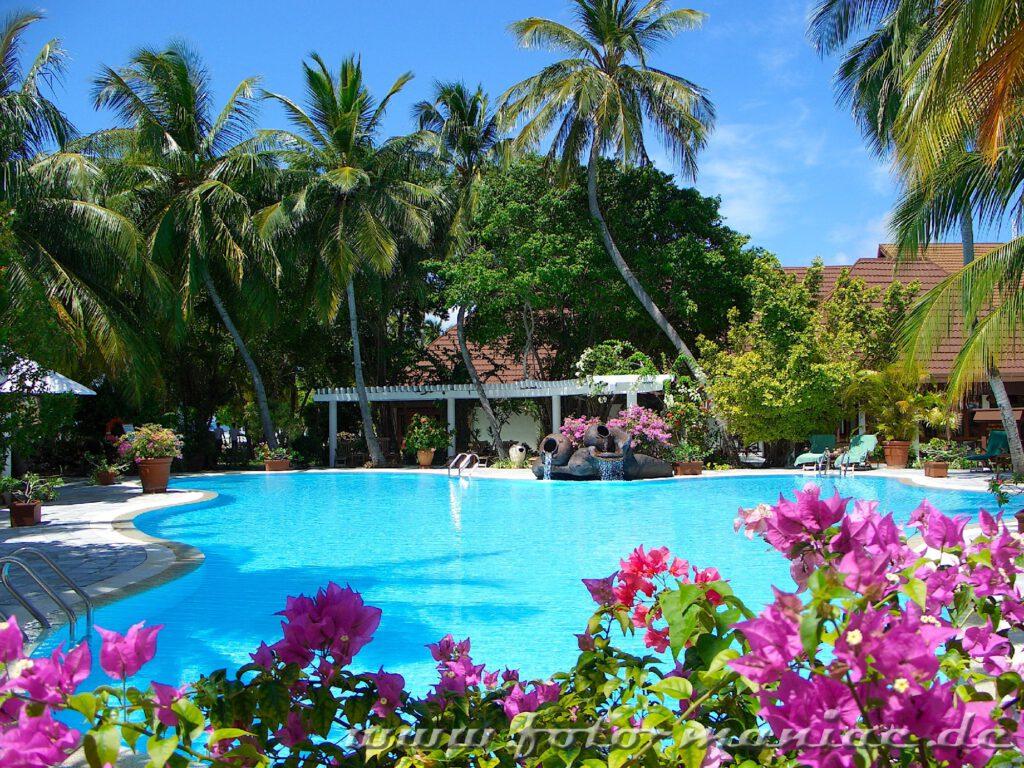 Pool in tropischer Landschaft